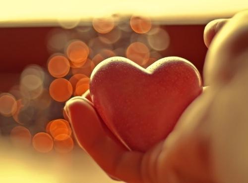donazione organi su CIE