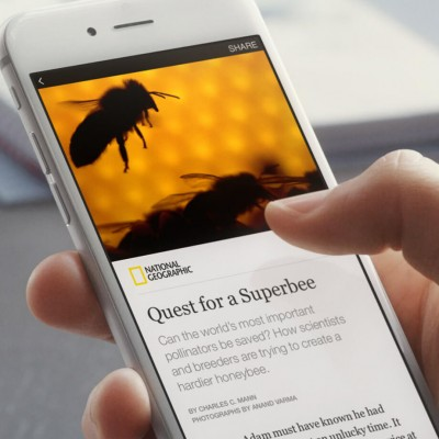 Instant articles mobile